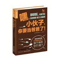 嘿,小伙子,你要当爸爸了!(美国畅销书,好妈妈送给准好爸爸的超棒礼物!帮助准爸准妈们顺利度过接下来的9个月。)(海豚传媒