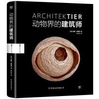 《动物界的建筑师》(世界新闻摄影奖得主英格・阿恩特展示动物的奇妙筑巢艺术)