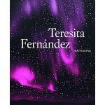 Teresita Fernández: Wayfinding 装置展示艺术设计书籍