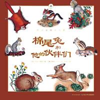 听大自然讲故事:棉尾兔和他的伙伴们
