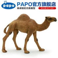单峰驼骆驼玩偶收藏模玩男孩礼物新款仿真野生动物模型