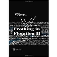 【预订】Frothing in Flotation II 9789056996314
