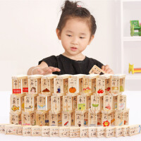 木制100粒双面汉字多米诺骨牌婴幼儿早教识字积木益智玩具
