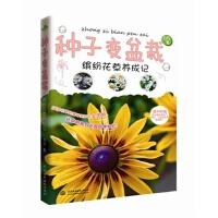 正版促销中hg~种子变盆栽---缤纷花草养成记 9787517022299 自在 水利水电出版社