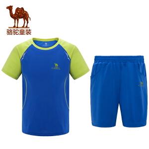 小骆驼童装春夏季儿童运动套装网布拼接T恤休闲短裤子2件套