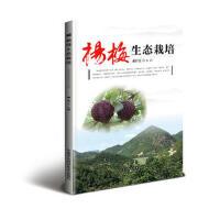 【正版二手书9成新左右】杨梅生态栽培 戚行江 中国农业科学技术出版社