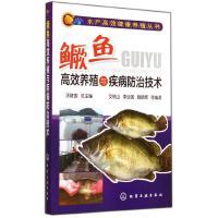 鳜鱼高效养殖与疾病防治技术/水产高效健康养殖丛书