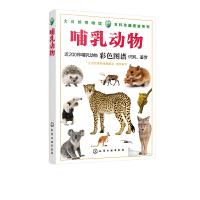 化学工业:大自然博物馆・百科珍藏图鉴系列-哺乳动物
