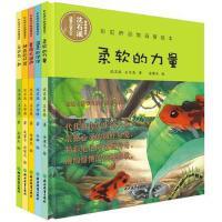 沈石溪动物小说大王5册 彩虹桥动物母爱绘本 柔软的力量 神奇的口袋 永远在一起 三四五六年级小学生课