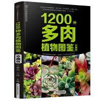 1200种多肉植物图鉴:珍藏版(汉竹)