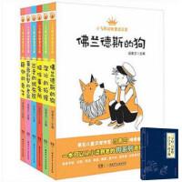 *畅销书籍*汤素兰儿童文学第一辑6册 小飞熊动物童话王国.溜冰的狐狸 颠倒的兔子 佛兰德斯的狗 猫咪事务所 蔷薇别墅的