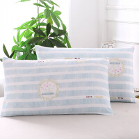 进口品质枕芯套加厚 单人信封枕头套一对装2只枕套48x74cm 一对 919 48cmX74c