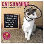 【预订】Cat Shaming 2020 Wall Calendar 9781549205750