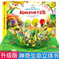 好好玩神奇生命立体书第二辑 蚂蚁的地下王国 儿童3d立体书翻翻书洞洞书籍0-2-3周岁幼儿绘本5-6岁读物 益智启蒙早