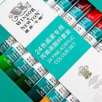 温莎牛顿24色丙烯颜料套装 12 18色丙烯画炳稀墙绘彩绘纺织颜料