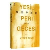 绿仙子之夜/土耳其当代文学