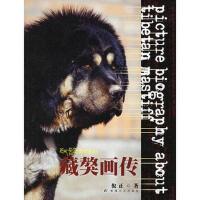 【二手书8成新】藏獒画传 倪正 敦煌文艺出版社