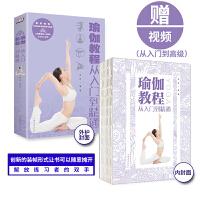 瑜伽书籍教程大全 从入门到精通零基础减肥美容全彩动作分解图 健康养生塑体美体健身高手瑜伽与冥想大全初学者正版