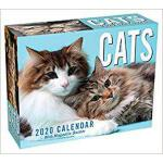 【预订】Cats 2020 Mini Day-To-Day Calendar 9781449497699
