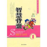 【旧书二手书8新正版】 智慧背囊 9787806606506 王玉强  南方出版社