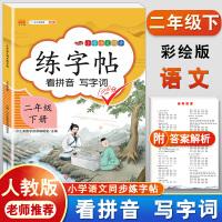练字帖二年级下册 人教版小学生语文看拼音写词语字帖