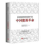 全球能源转型背景下的中国能源革命