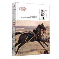 黑骏马-世界优秀动物小说选