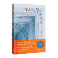 【二手旧书9成新】法国现代自传体小说:在海的尽头遇见你-[法] 卡特琳・普兰-9787020140916 人民文学出版