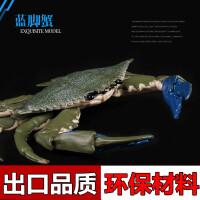 玩具大闸蟹 螃蟹 花蟹 蓝脚蟹模型儿童仿真海洋生物野生动物模型