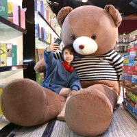 泰迪熊熊�公仔抱抱熊大�抱枕娃娃女生大熊毛�q玩具可�叟�孩玩偶
