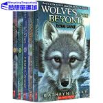 绝境狼王 英文原版 6本全套装 Wolves Of The Beyond 儿童小说章节书 Lone/Shadow/Wa
