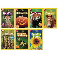 进口英文原版绘本 National Geographic Kids Readers L1 全彩版 美国国家地理8册L1