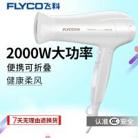 飞科(FLYCO)电吹风 FH6232 2000W功率 恒温护发 过热保护