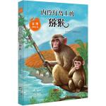 袁博动物小说:内伶仃岛上的猕猴