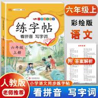 练字帖六年级上册 人教版小学生语文看拼音写词语字帖