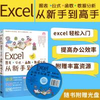 中青雄狮:Excel图表/公式/函数/数据分析从新手到高手(畅销升级版)