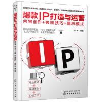爆款IP打造与运营:内容创作+吸粉技巧+赢利模式 化学工业