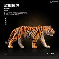 仿真动物老虎 模型玩具老虎 东北虎孟加拉虎模型儿童玩具