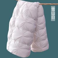 羽绒被95白鹅绒被芯冬被双人春秋被单人全棉被子加厚保暖