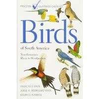 英文原版 南美洲鸟类:非雀类:从美洲鸵到啄木鸟 Birds of South America (Princeton I