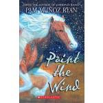 【预订】Paint the Wind