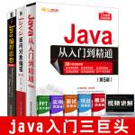 全3册 Java从入门到精通 第5版+Java面向对象编程第2版+Java编程思想第4版中文版thinking in