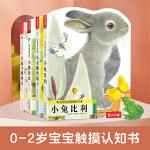 亮丽精美触摸书系列(全4册)