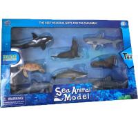 海洋动物模型海豹海龟海狮海豚鲨鱼鲸鱼塑料静态模型情感益智玩具