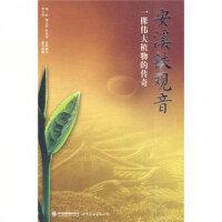 【特�r秒��】安溪�F�^音-一棵�ゴ笾参锏�髌胬钣裣槭澜�D��出版公司