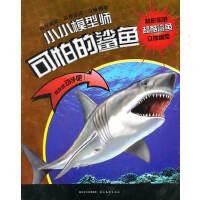 小小模型师系列:可怕的鲨鱼