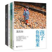 "BX 龙应台作品 全集(共4册 全套) 包括(《目送》《孩子你慢慢来》《亲爱的安德烈》龙应台""人生三书""系列 《野火集"