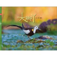 中国原创图画书:大脚丫
