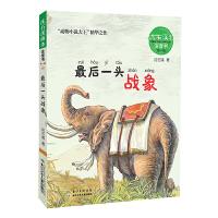 沈石溪画本・注音书系列(第一辑)――最后一头战象