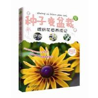 [二手旧书9成新]种子变盆栽――缤纷花草养成记,自在,9787517022299,水利水电出版社